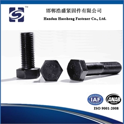 8.8 grade black hex bolts with ISO 9001: 2008
